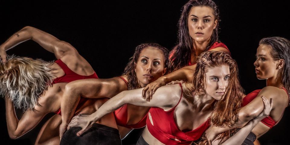 Posterbild för Svenska Balettakademins examensföreställning The Turnout.